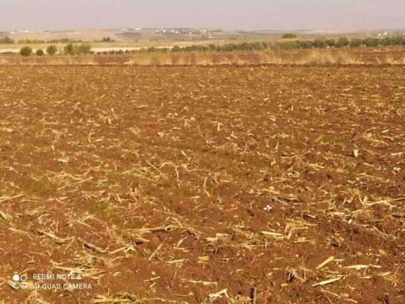 Gaziantep Sütlüce Satılık Muhtelif Arazi